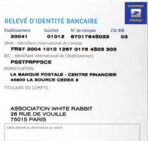 RIB White rabbit