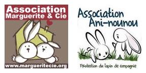 Association lapins