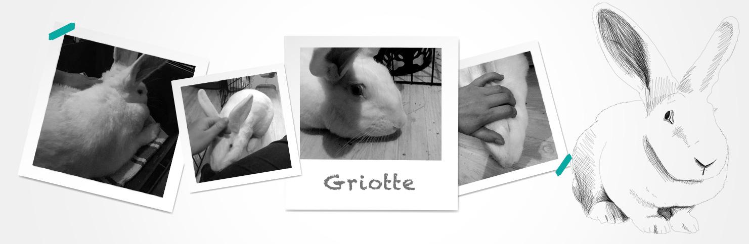 Griotte