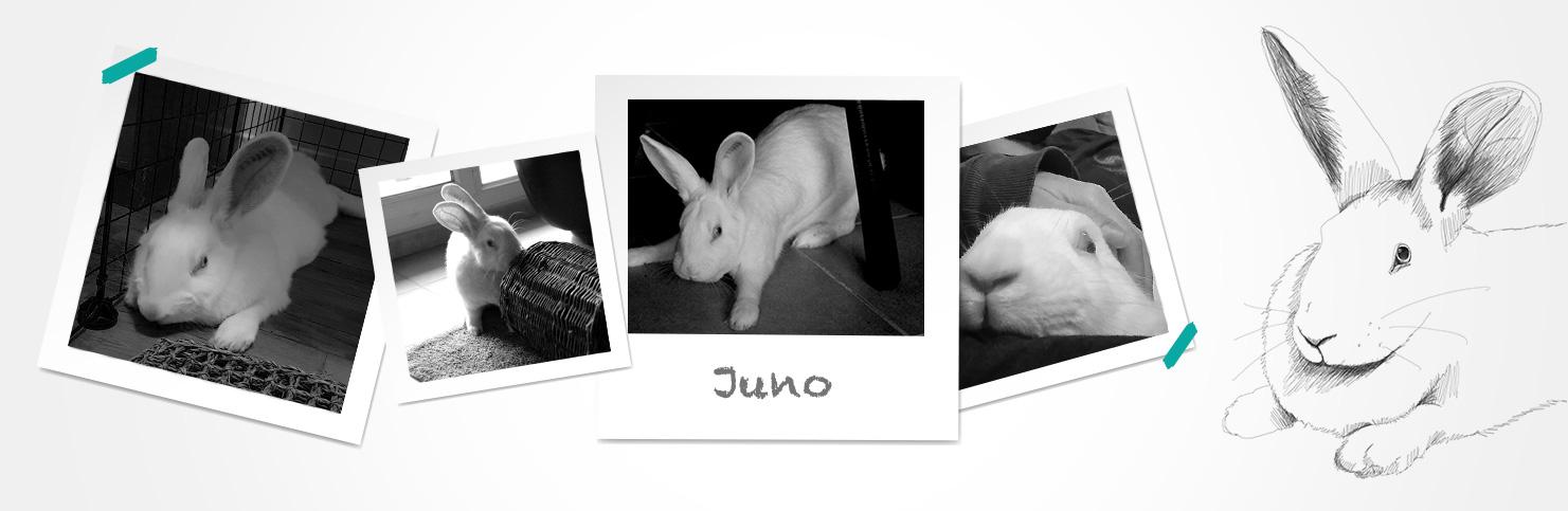 Juno (réservée)